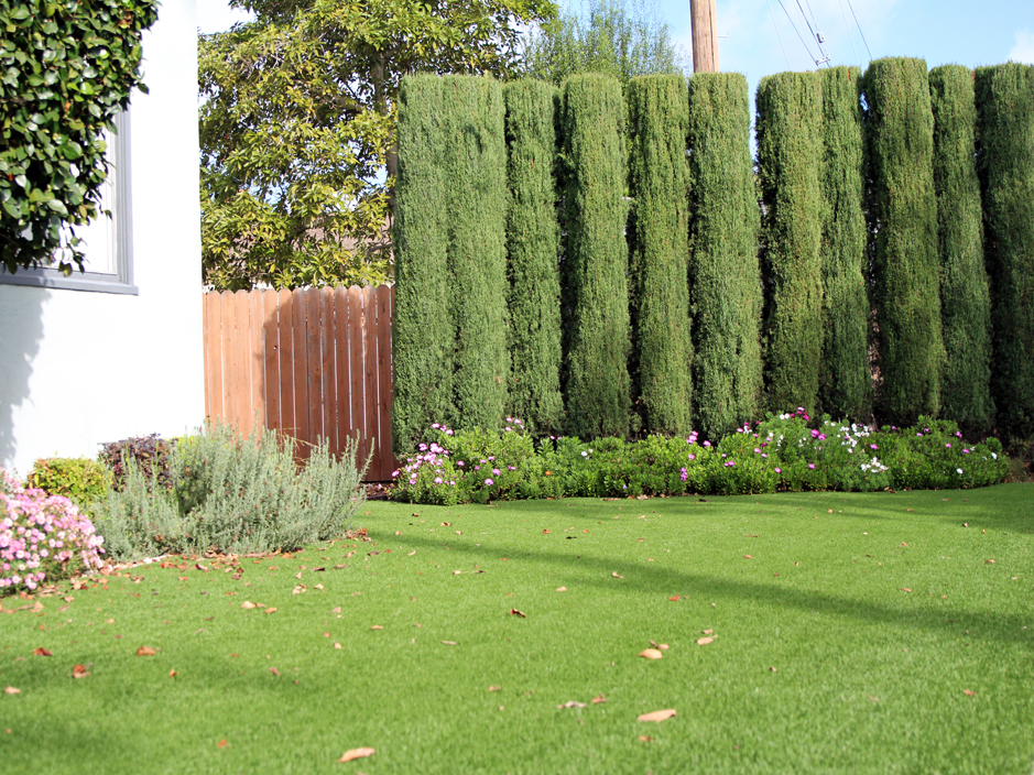 Artificial Turf Cost Decherd Tennessee Landscaping Front Yard