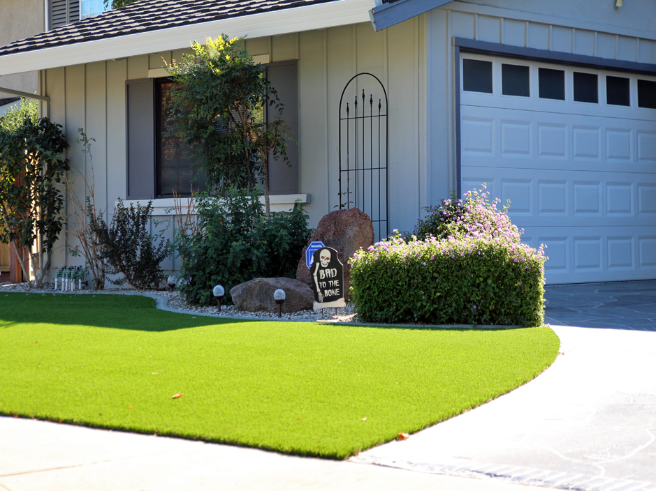 Grass Turf Spurgeon Tennessee Roof Top Front Yard Design