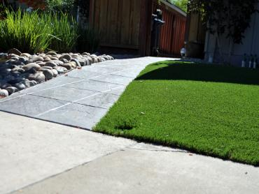 Artificial Grass Photos: Artificial Grass Carpet Bartlett, Tennessee Home And Garden, Front Yard