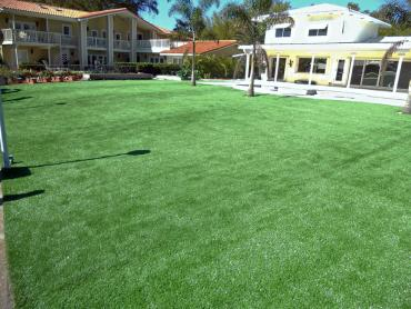 Artificial Grass Photos: Artificial Grass Carpet Dowelltown, Tennessee Gardeners, Swimming Pool Designs