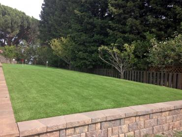 Artificial Grass Photos: Artificial Grass Carpet Gilt Edge, Tennessee Gardeners, Backyard