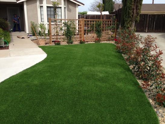 Artificial Grass Photos: Artificial Grass Carpet Petros, Tennessee Backyard Playground, Small Front Yard Landscaping