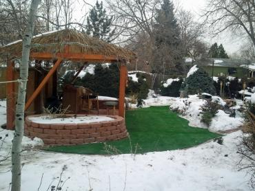 Artificial Grass Photos: Artificial Grass Installation Dunlap, Tennessee Backyard Playground, Cold Climate