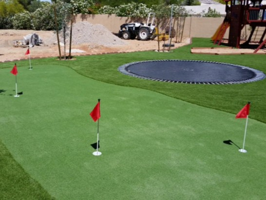 Artificial Grass Photos: Artificial Grass Installation New Market, Tennessee Putting Green Carpet, Backyard Landscaping Ideas