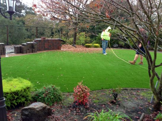 Artificial Grass Photos: Artificial Grass Installation Selmer, Tennessee Landscape Photos, Small Backyard Ideas