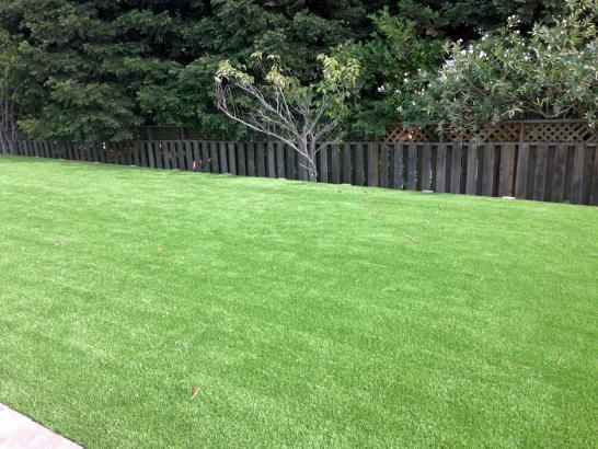 Artificial Grass Photos: Artificial Lawn Somerville, Tennessee Home And Garden, Backyard Ideas