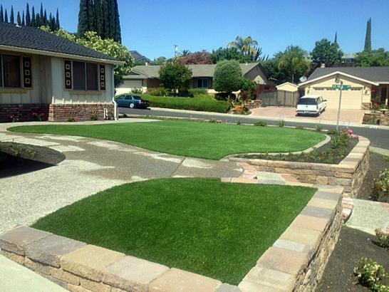 Artificial Grass Photos: Artificial Turf Clifton, Tennessee Gardeners