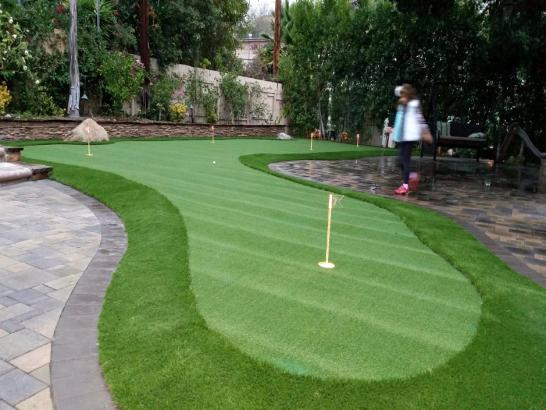 Artificial Grass Photos: Artificial Turf Columbia, Tennessee How To Build A Putting Green, Backyard Garden Ideas