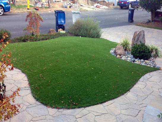 Artificial Grass Photos: Artificial Turf Cost Charlotte, Tennessee Home And Garden