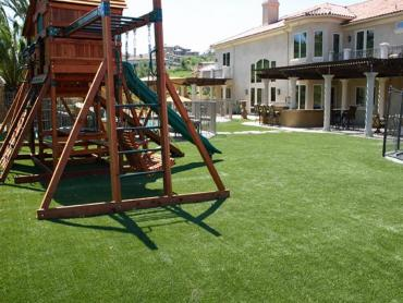 Artificial Grass Photos: Artificial Turf Installation Pleasant Hill, Tennessee Backyard Playground, Backyard