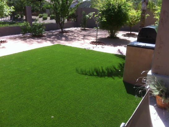 Artificial Grass Photos: Best Artificial Grass Coalfield, Tennessee Landscaping Business, Backyard Design