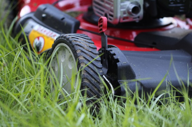 Do You Like To Mow The Lawn? Then You Better Think Twice Before You Do It artificial grass