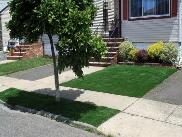 Artificial Grass Photos: Fake Grass Carpet East Chattanooga, Tennessee Landscape Ideas, Front Yard Landscaping