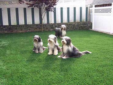 Artificial Grass Photos: Fake Grass Carpet Garland, Tennessee Lawn And Garden, Backyard Landscape Ideas