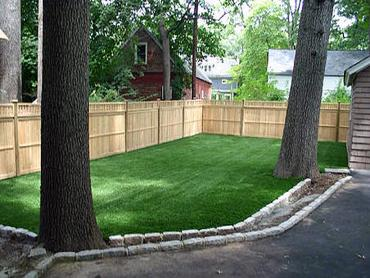 Artificial Grass Photos: Fake Grass Carpet Robbins, Tennessee Home And Garden, Backyard Landscaping