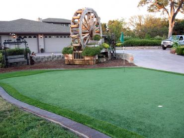 Artificial Grass Photos: Fake Grass Copperhill, Tennessee Putting Green Carpet, Front Yard Landscaping Ideas