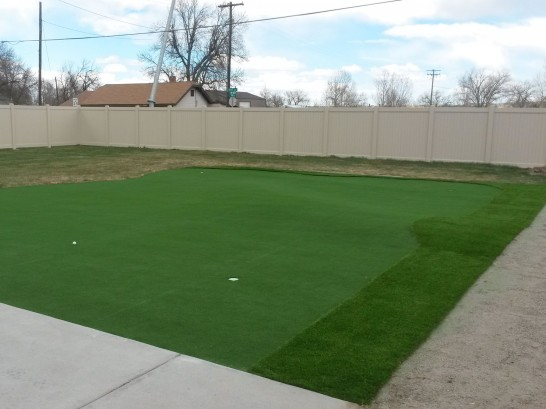 Artificial Grass Photos: Fake Grass Lenoir City, Tennessee Indoor Putting Green, Backyard Ideas