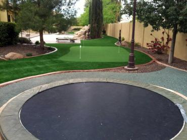 Fake Turf Oak Grove, Tennessee Playground Safety, Backyard Design artificial grass