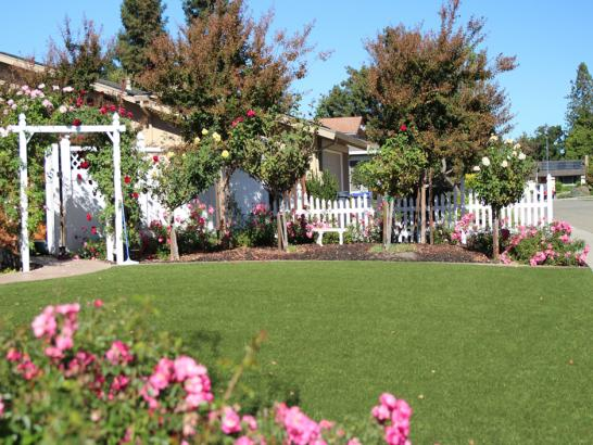 Artificial Grass Photos: Fake Turf Samburg, Tennessee Landscaping Business, Front Yard Design
