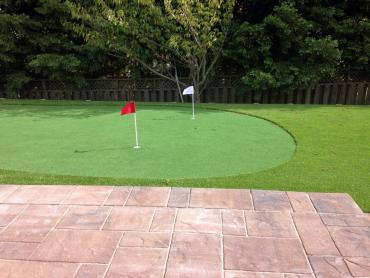 Artificial Grass Photos: Faux Grass Arlington, Tennessee Lawns, Backyard Ideas