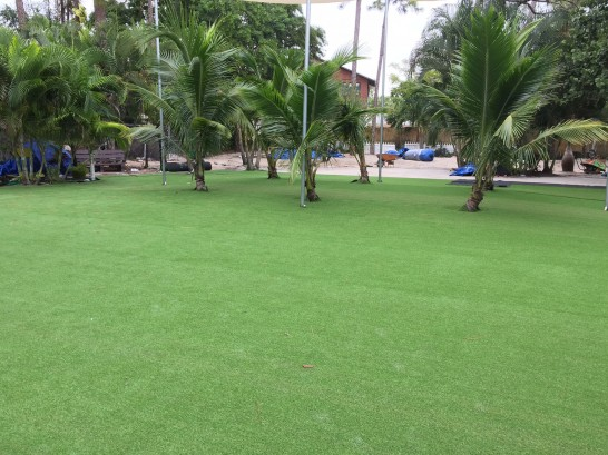 Artificial Grass Photos: Faux Grass Maynardville, Tennessee Landscaping, Commercial Landscape