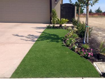 Artificial Grass Photos: Grass Carpet Harrison, Tennessee Rooftop, Front Yard Design