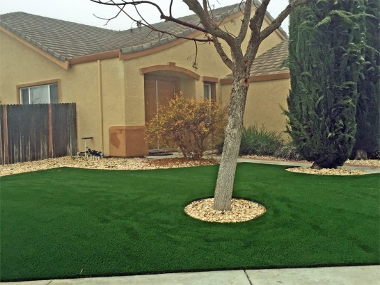 Artificial Grass Photos: Grass Carpet Oakdale, Tennessee Lawn And Landscape, Landscaping Ideas For Front Yard