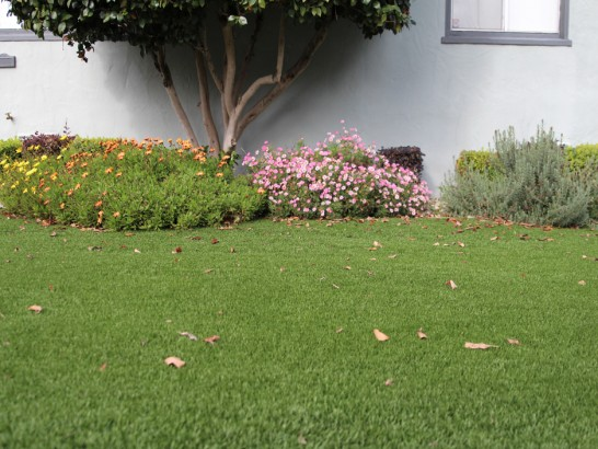 Artificial Grass Photos: Grass Carpet Riceville, Tennessee Roof Top, Front Yard Landscape Ideas