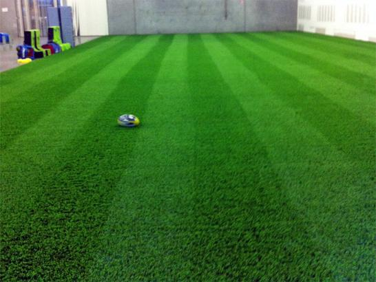 Artificial Grass Photos: Grass Installation Pelham, Tennessee Eco Friendly Products