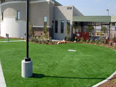 Artificial Grass Photos: Grass Turf New Market, Tennessee Garden Ideas, Commercial Landscape