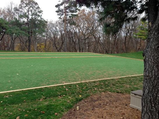 Artificial Grass Photos: Grass Turf Parsons, Tennessee Backyard Soccer