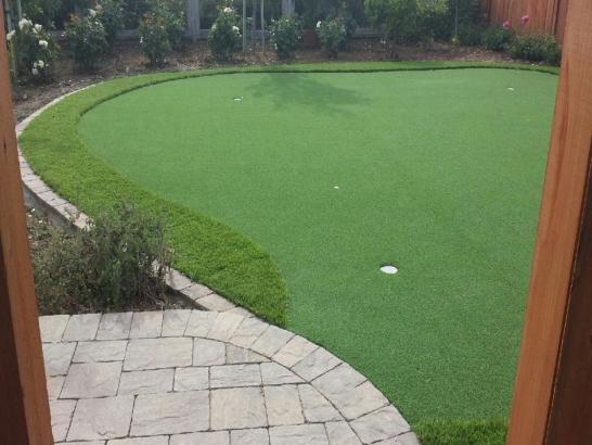 Artificial Grass Photos: How To Install Artificial Grass Rives, Tennessee Indoor Putting Green, Backyard Ideas