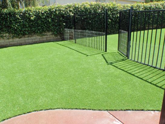 Artificial Grass Photos: Installing Artificial Grass Dunlap, Tennessee Roof Top, Landscaping Ideas For Front Yard