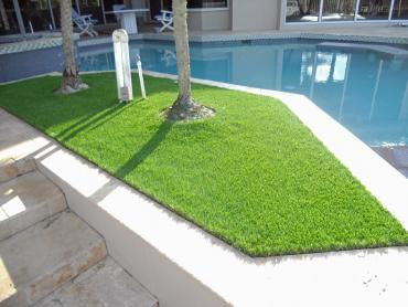 Artificial Grass Photos: Installing Artificial Grass Three Way, Tennessee Garden Ideas, Backyard Ideas