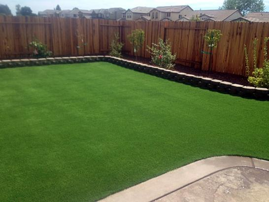 Artificial Grass Photos: Lawn Services Chesterfield, Tennessee Gardeners, Beautiful Backyards