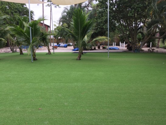 Artificial Grass Photos: Lawn Services Garland, Tennessee Landscape Photos, Commercial Landscape