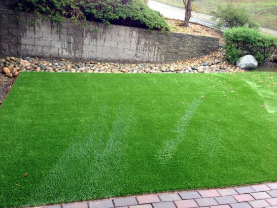 Artificial Grass Photos: Lawn Services Trimble, Tennessee Home And Garden, Backyard Landscaping