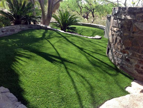 Artificial Grass Photos: Outdoor Carpet Brownsville, Tennessee Drainage