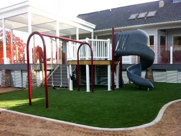 Artificial Grass Photos: Outdoor Carpet Centerville, Tennessee Gardeners, Beautiful Backyards