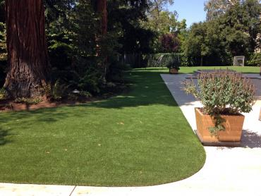Artificial Grass Photos: Outdoor Carpet Nolensville, Tennessee Landscaping, Front Yard Ideas