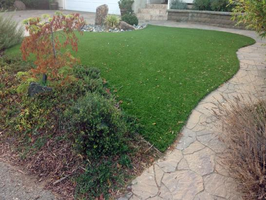 Artificial Grass Photos: Outdoor Carpet Springfield, Tennessee Garden Ideas, Backyard Landscaping