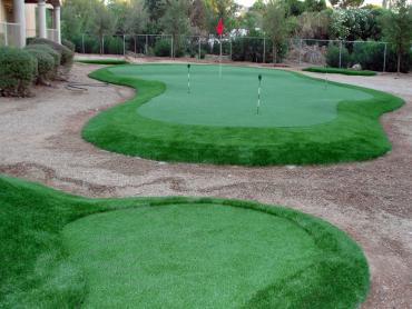 Plastic Grass Brownsville, Tennessee Putting Greens, Backyard Landscaping Ideas artificial grass