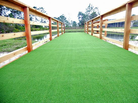 Artificial Grass Photos: Plastic Grass Saulsbury, Tennessee Dog Run, Commercial Landscape