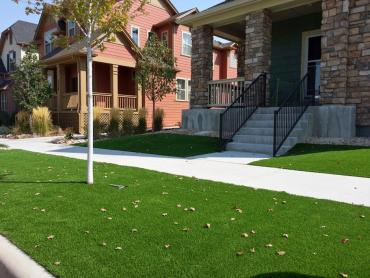 Plastic Grass Stanton, Tennessee Lawn And Garden, Front Yard Landscaping artificial grass