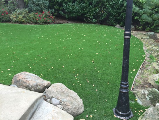 Artificial Grass Photos: Plastic Grass Wartburg, Tennessee Landscape Photos, Backyard Landscaping