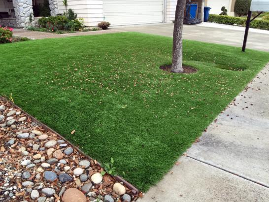 Artificial Grass Photos: Synthetic Grass Cost Graball, Tennessee Landscaping, Front Yard Design