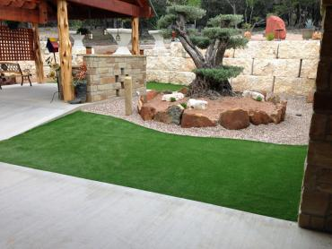 Artificial Grass Photos: Synthetic Grass Cost Grimsley, Tennessee Landscape Design, Backyard