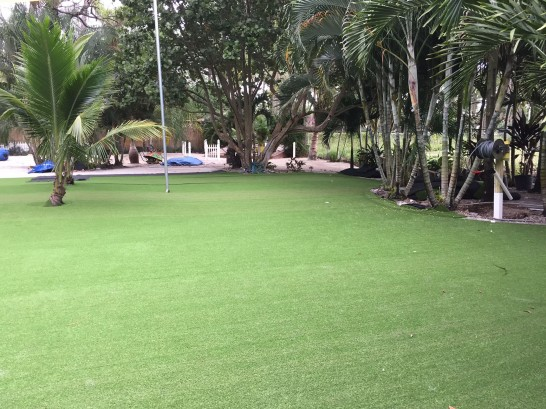 Artificial Grass Photos: Synthetic Grass Cost Jellico, Tennessee Lawns, Commercial Landscape