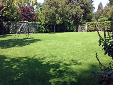 Artificial Grass Photos: Synthetic Grass Cost La Vergne, Tennessee Bocce Ball Court, Backyard Garden Ideas