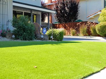 Artificial Grass Photos: Synthetic Grass Cost Lakeland, Tennessee Landscape Photos, Front Yard Landscaping
